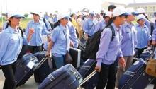 Thị trường giúp việc tại Đài Loan có gì hot